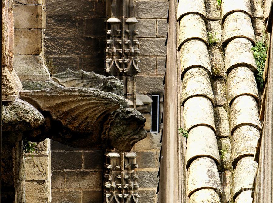 Spain Photograph - Spain - Seville Cathedral - Gargoyles by Jacqueline M Lewis