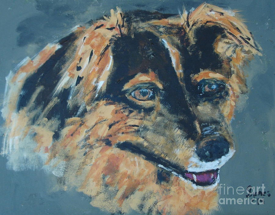 Spaniel Mix by Shelley Jones