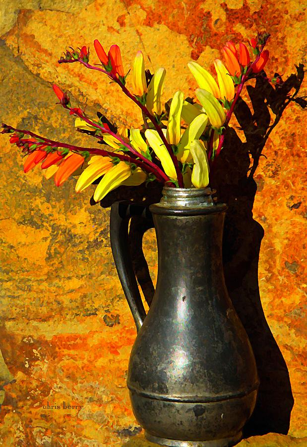 Ipomoea Photograph - Spanish Flags In Pewter  by Chris Berry