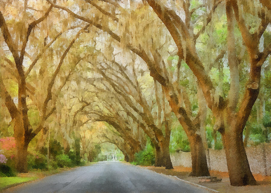 Spanish Painting - Spanish Moss - Symbol Of The South by Christine Till