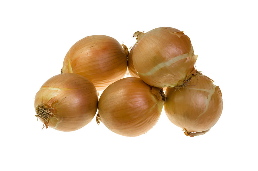 Agriculture Photograph - Spanish Onions by John Trax