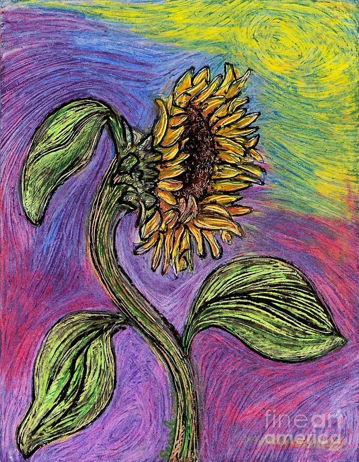 Spanish Sunflower Drawing - Spanish Sunflower by Sarah Loft