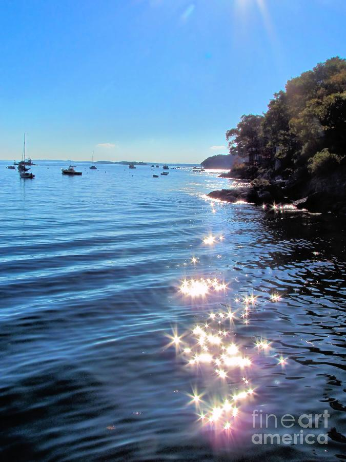 Sun Photograph - Sparkles And Twinkles by Elizabeth Dow