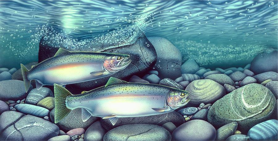 Jon Q Wright Painting - Spawning Steelhead Trout by JQ Licensing