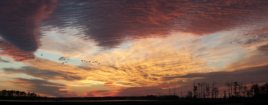 2013 Photograph - Spectacular Sunset At Blackwater National Wildlife Refuge by Lauren Brice