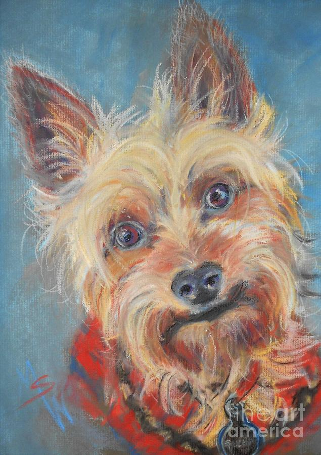 Yorkie Pastel - Spector by Mindy Sue Werth