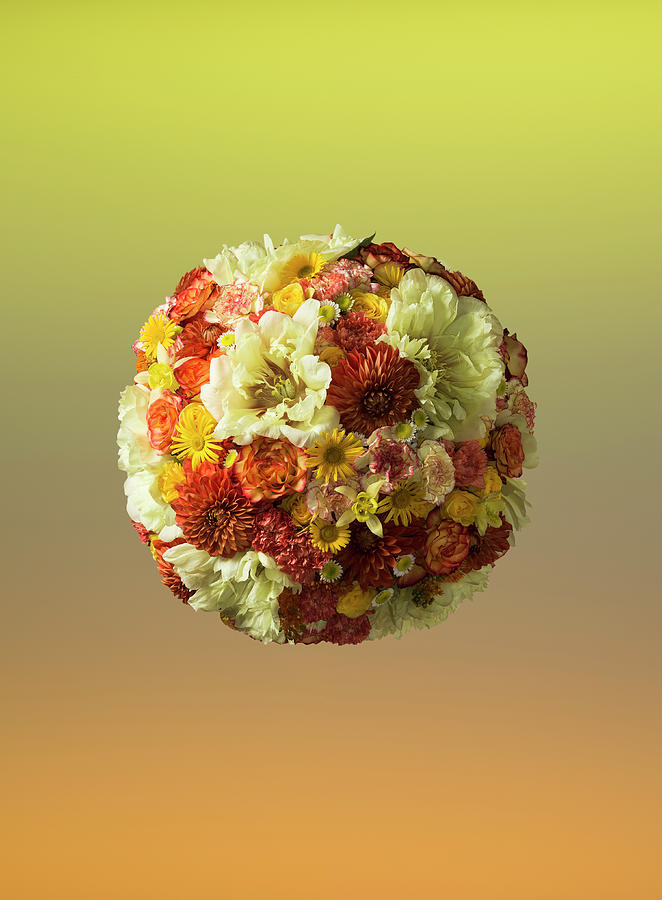 Sphere Shaped Floral Arrangement Photograph by Jonathan Knowles