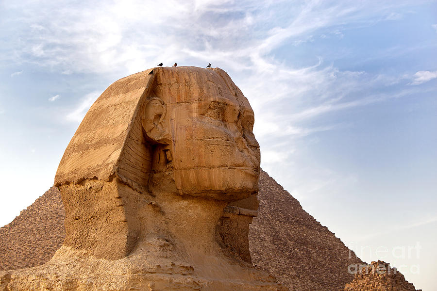 Africa Photograph - Sphinx Egypt by Jane Rix