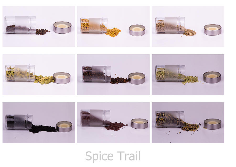 Collage Photograph - Spice Trail by SAURAVphoto Online Store