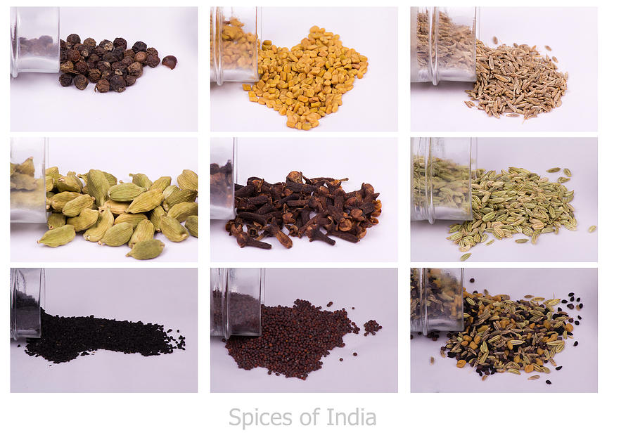 Collage Photograph - Spices of India by SAURAVphoto Online Store