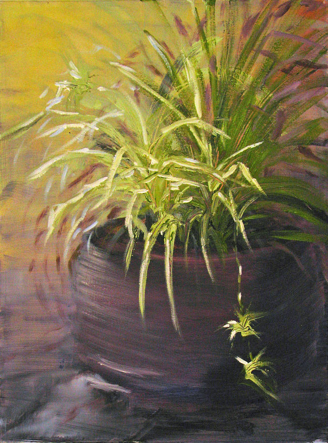 Plant Painting - Spider Plant by Sherry Robinson