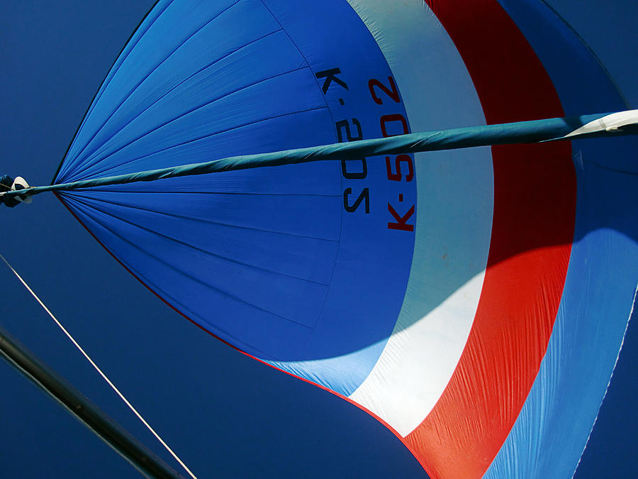 Spinnaker Photograph - Spinnaker Flying by Tony Reddington