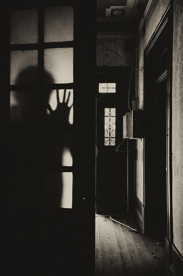 Spirit Photograph - Spirit by Marco Oliveira