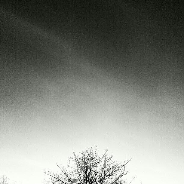 Htc Photograph - Spiritu by CML Brown