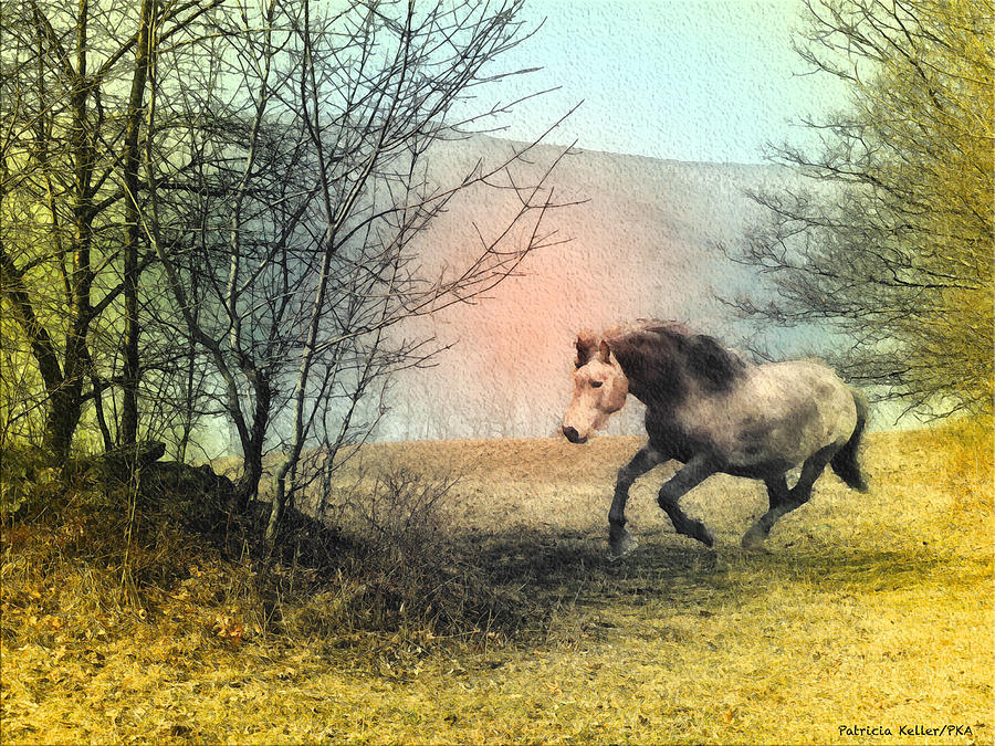 Country Life Photograph - Spiritus Equus by Patricia Keller