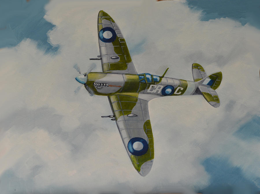 Fighter Aircraft Painting - Spitfire Mk.viii by Murray McLeod
