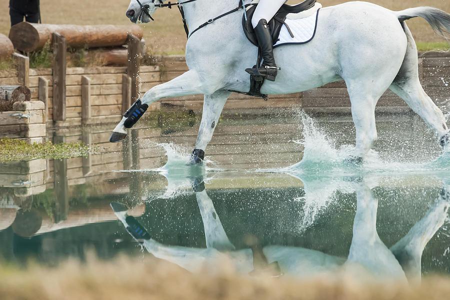 Splashy Reflection by M Davis