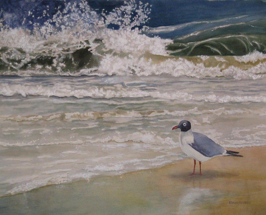 Seascape Painting - Splish Splash by Parrish Hirasaki