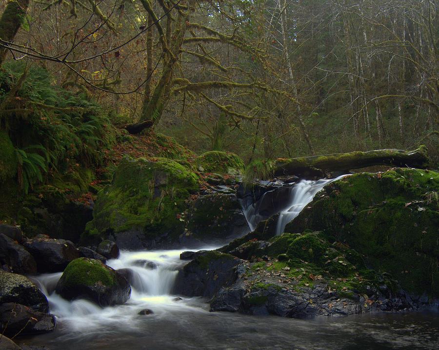 Waterfalls Photograph - Split Falls 3 by Scott Gould