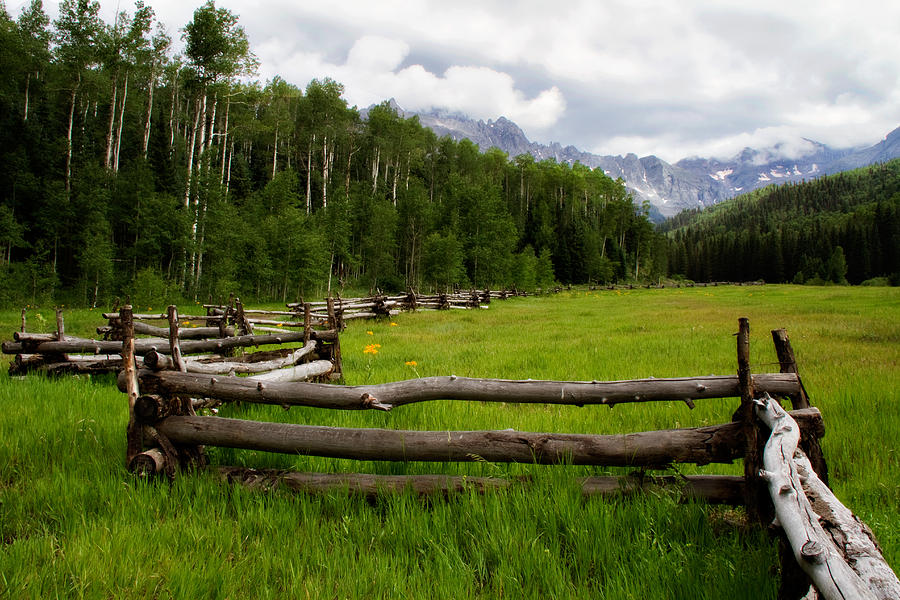 blue Lakes Trail Head Photograph - Split Rail Meadow by Lana Trussell