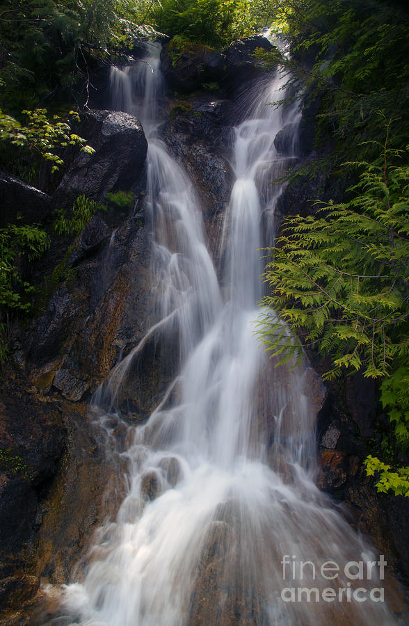Waterfall Photograph - Split Top Falls by Mike  Dawson
