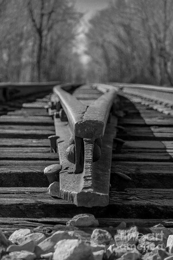 Black And White Photograph - Split Track by Rick McKee