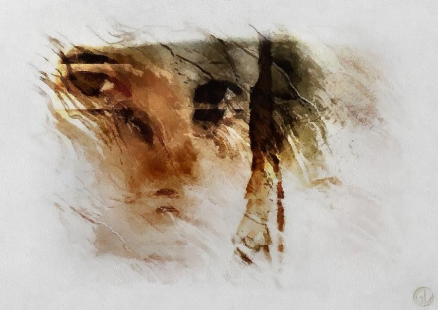 Woman Digital Art - Split Vision by Gun Legler