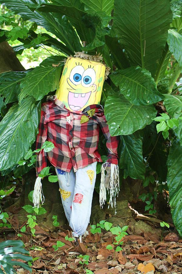 Sponge Bob Photograph - Sponge Bob Scarecrow by Chuck  Hicks