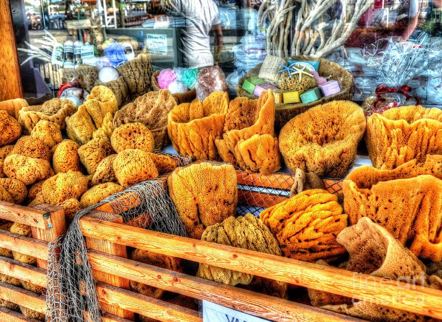 Sponges Photograph - Sponge Worthy by Debbi Granruth