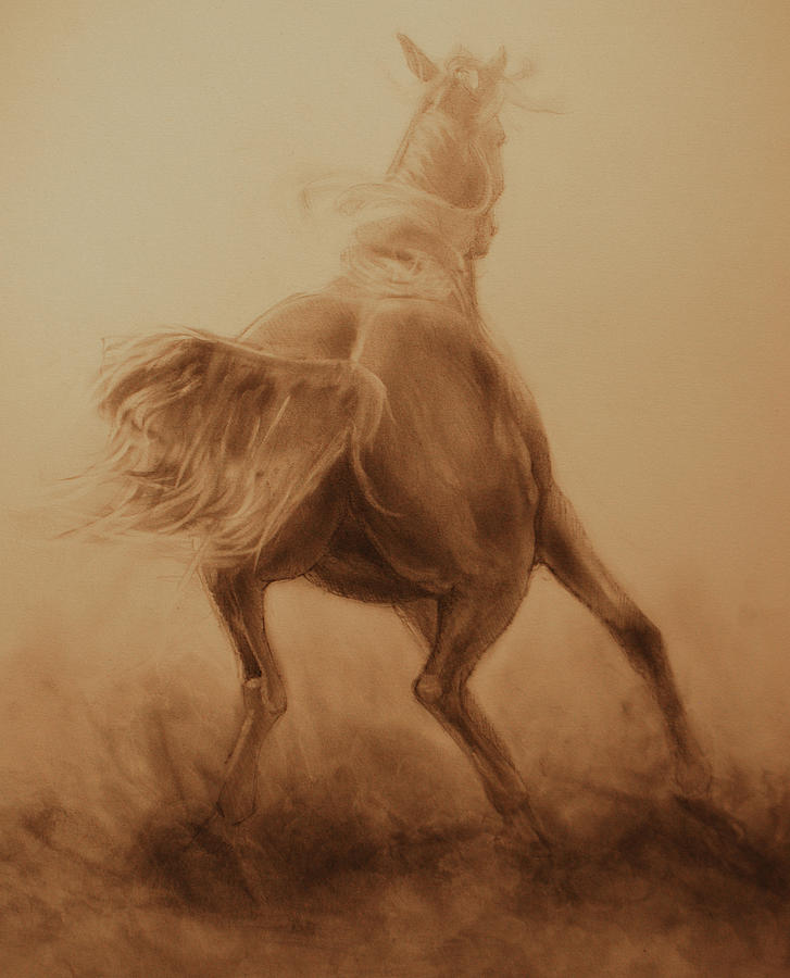 Horse Portraits Painting - Spooked by Jani Freimann