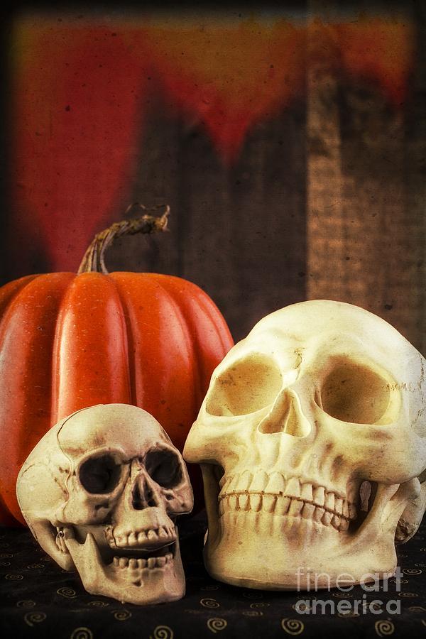Halloween Photograph Spooky Halloween Skulls By Edward Fielding