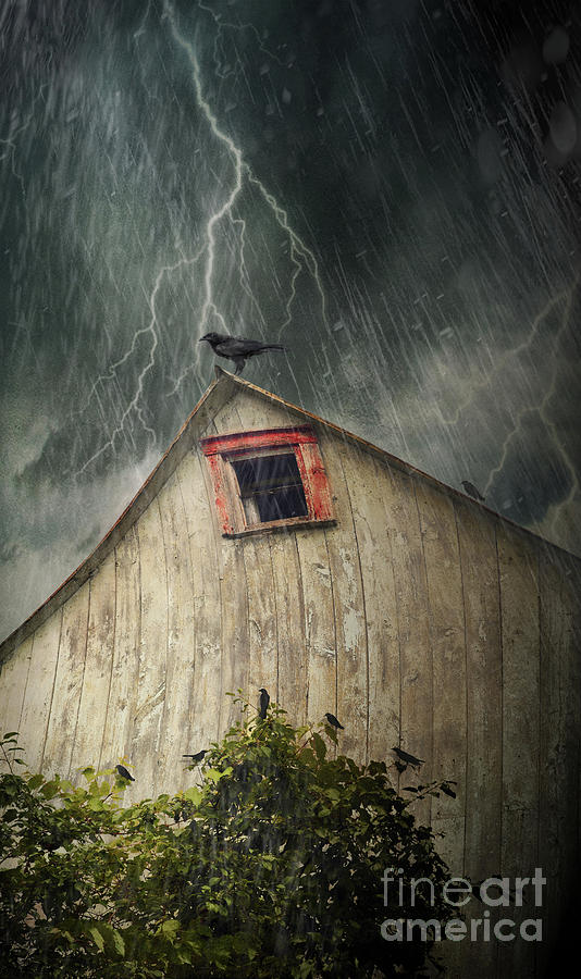 Abandoned Photograph - Spooky Old Barn With Crows On A Stormy Night by Sandra Cunningham