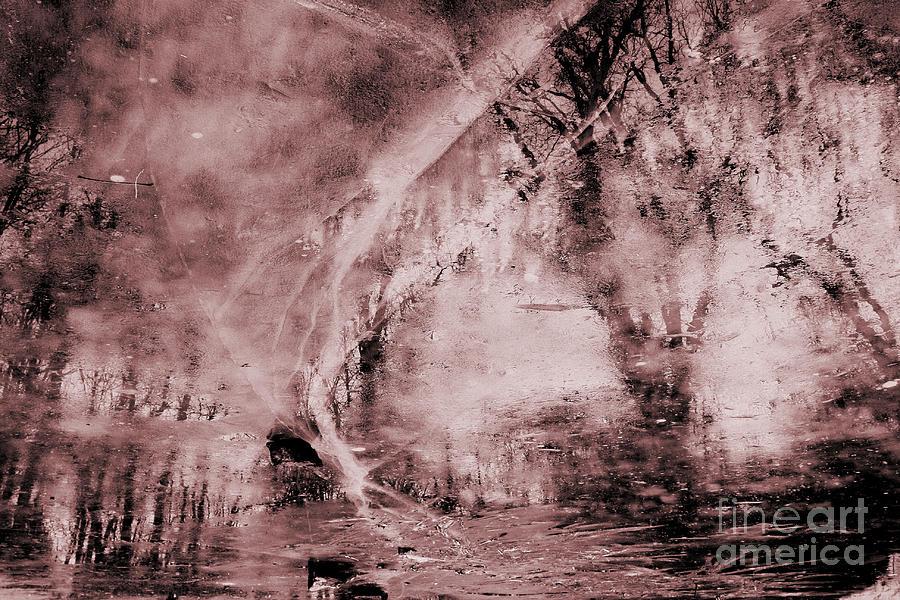 Spooky Woods by Stan Reckard