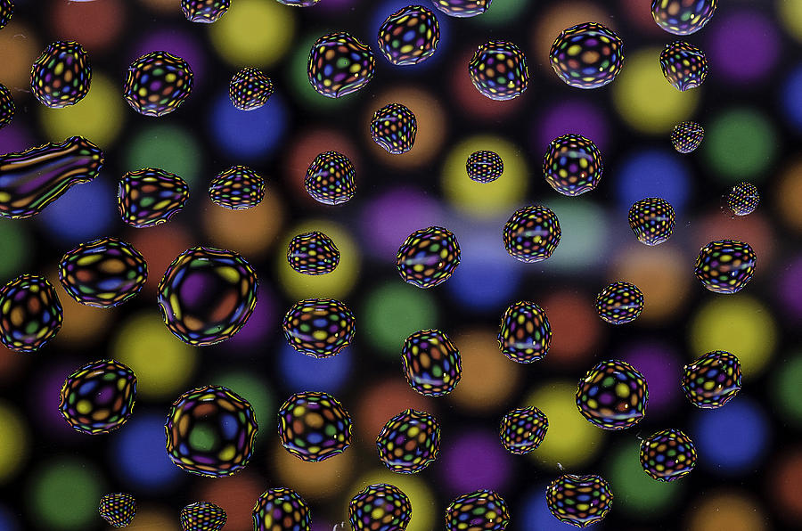 Still Life Photograph - Spots And Circles by Mark Stewart