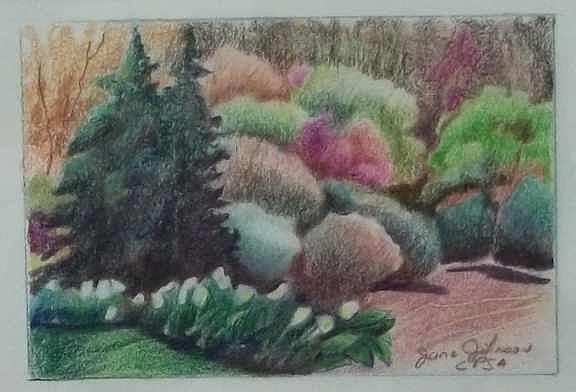Garden Drawing - Spring Afternoon by Jane Johnson