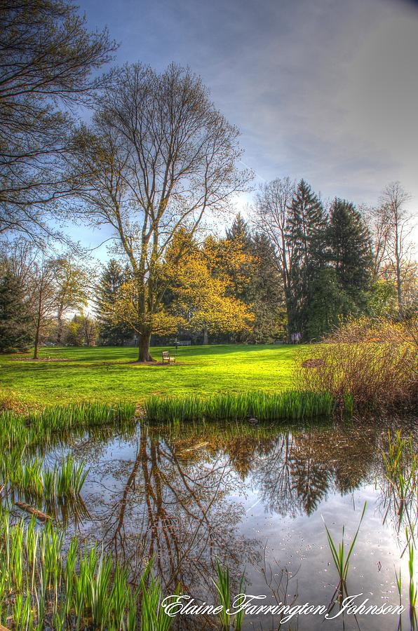 Spring at Inniswood by Elaine Farrington Johnson