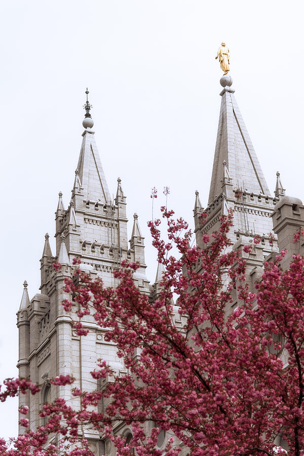 Salt Lake Temple Photograph - Spring At The Temple by Chad Dutson