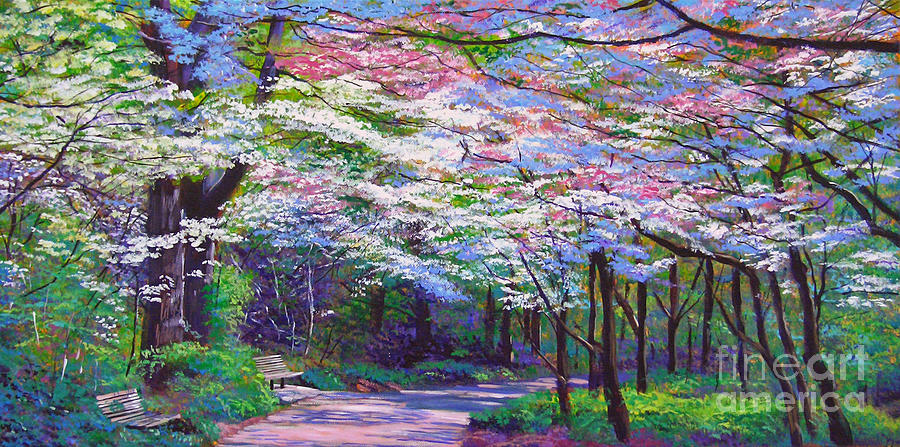 Spring Blossom Pathway Painting By David Lloyd Glover