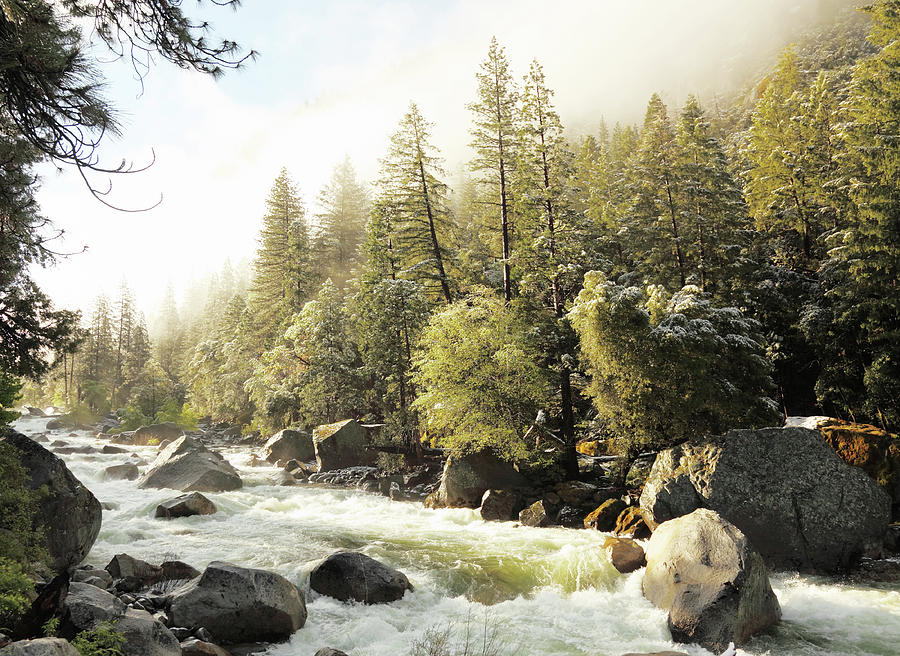 Spring Creek And Rocks In Yosemite Park Photograph by Arturbo