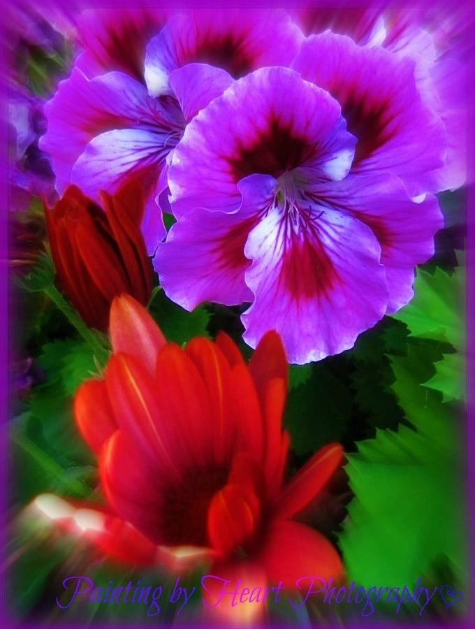 Spring by Deahn      Benware