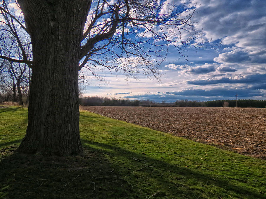 Fields Photograph - Spring Fields by Susan Desmore