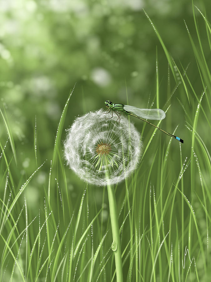 Dandelion Digital Art - Spring Flowering by Veronica Minozzi