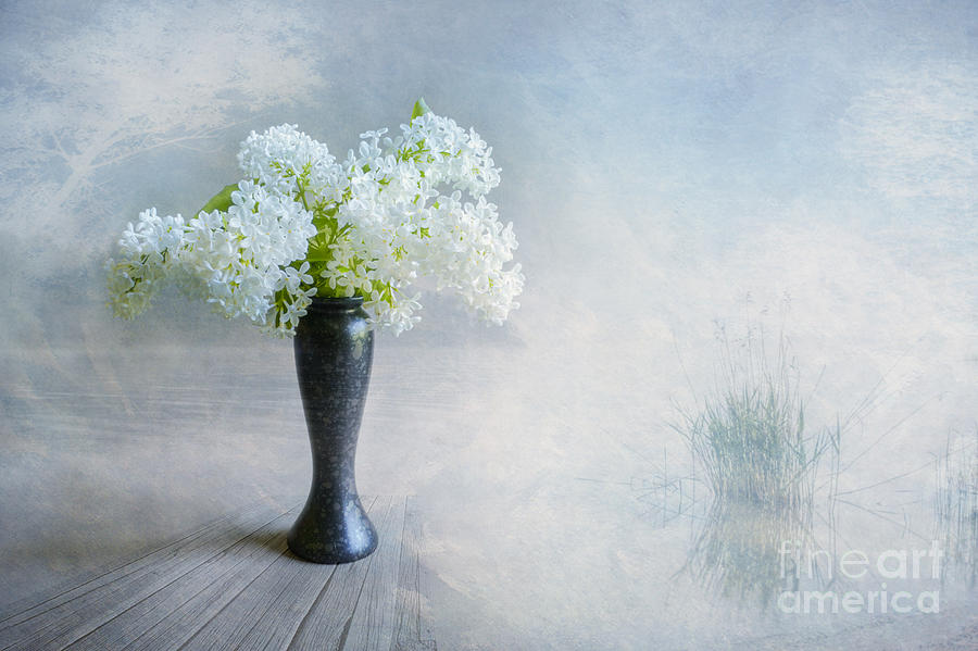Art Work Photograph - Spring Flowers by Veikko Suikkanen