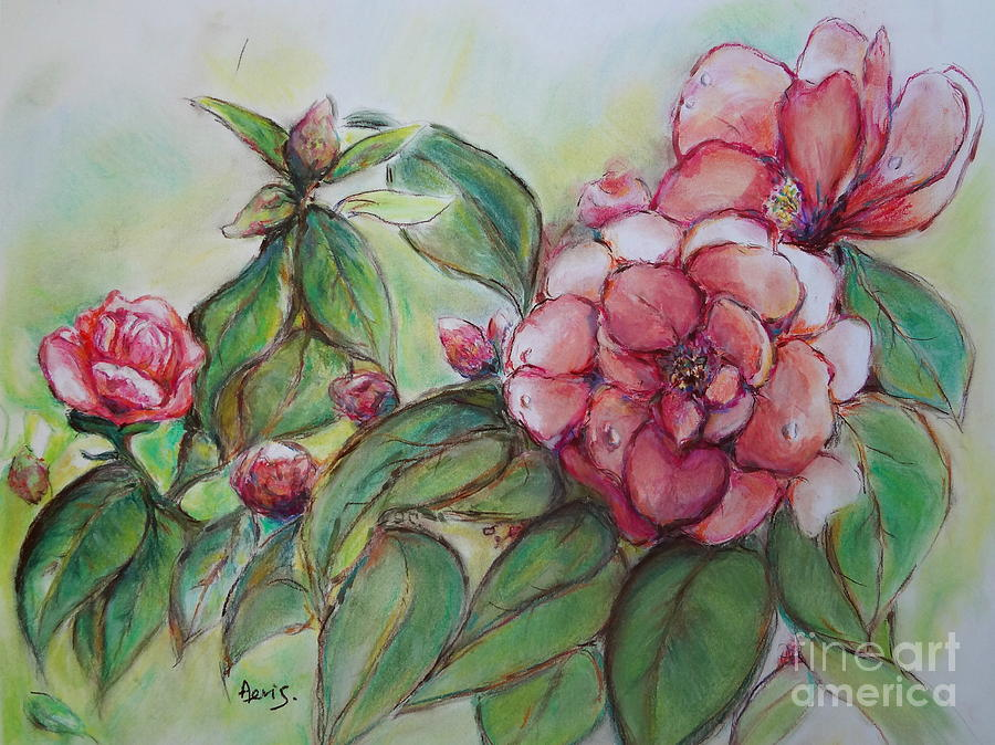Spring Flowers Painting - Spring Flowers Wet With Dew Drops Original Canadian Pastel Pencil by Aeris Osborne