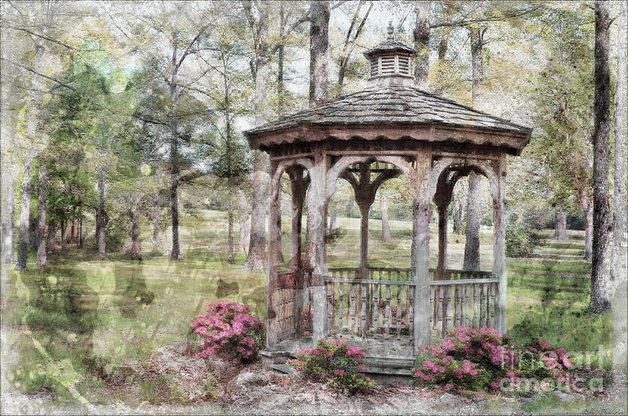 Nature Photograph - Spring Gazebo Painteffect by Debbie Portwood