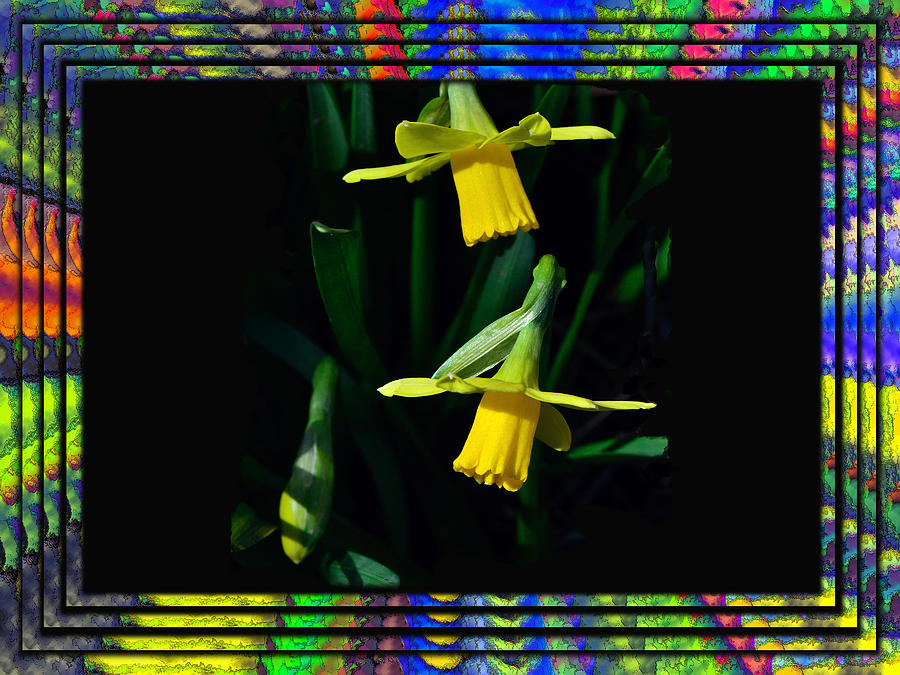 Abstract Photograph - Spring In A Frame by Larry Bishop