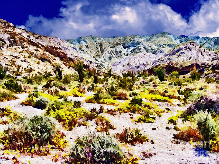 Anza-borrego Painting - Spring In Anza Borrega  by Bob and Nadine Johnston