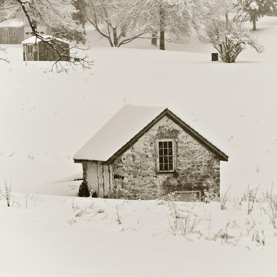 House Mixed Media - Spring In Boyertown by Trish Tritz