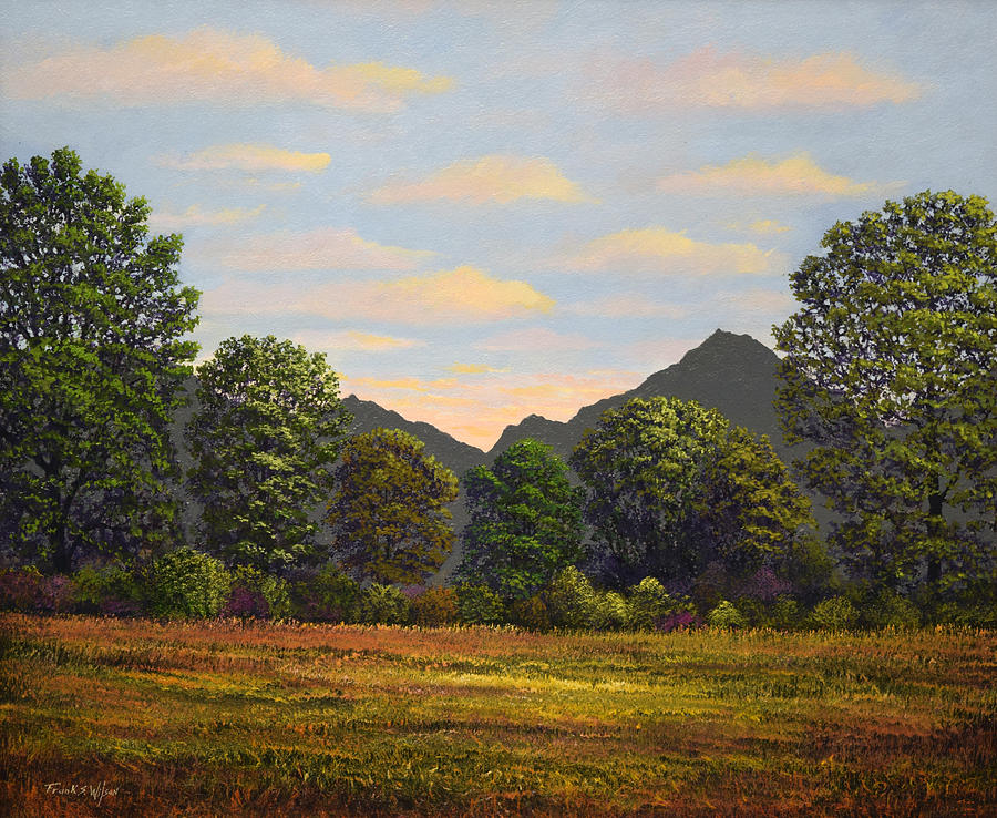 Sutter Buttes Painting - Spring Meadow At Sutter Buttes by Frank Wilson
