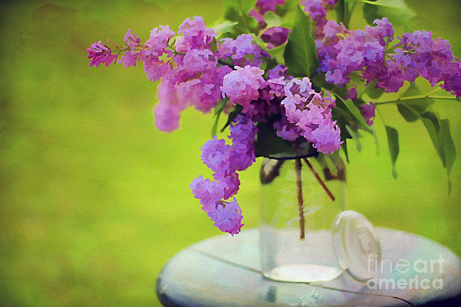 Arrangement Photograph - Spring Memories by Darren Fisher